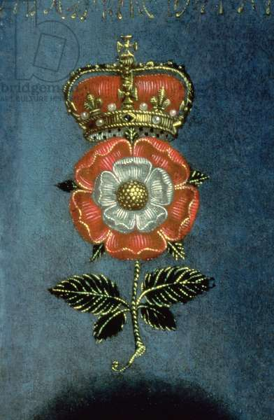 Queen Elizabeth I, the Pelican Portrait, detail of the Tudor Rose, c.1574 (oil on canvas) (detail of 44897)