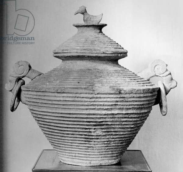 A ritual vessel with a bird-shaped lid handle