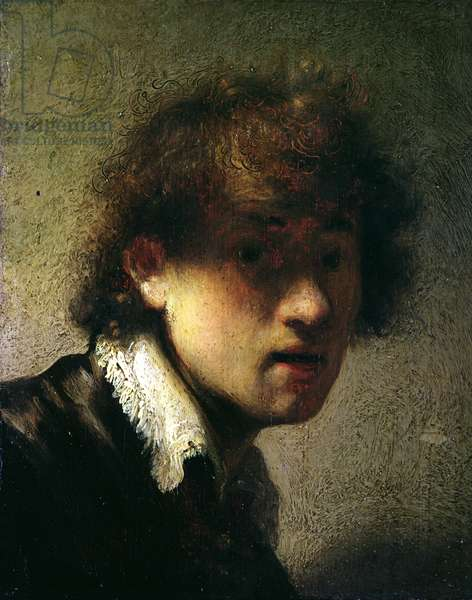 Head of a Young Man or Self Portrait, 1629 (oil on panel)
