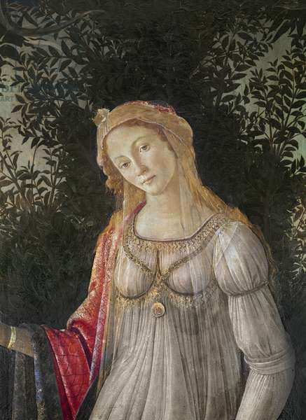 Allegory to Spring, detail of Venus, c.1478 (tempera on wood)