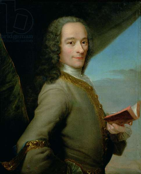 Portrait of the Young Voltaire (1694-1778) (oil on canvas)