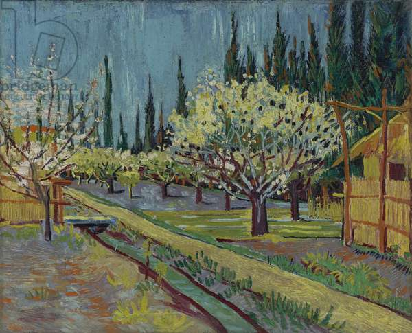Orchard Bordered by Cypresses, 1888 (oil on canvas)