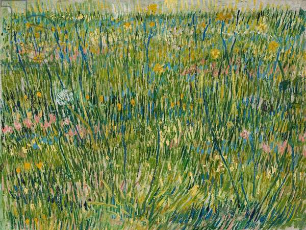 Patch of Grass, April-June 1887 (oil on canvas)
