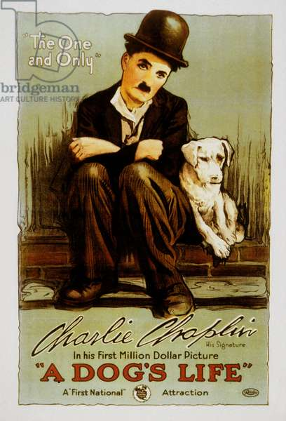 Poster of the film A dog 's life by and with Charlie Chaplin (the tramp), with the dog Mut (Scraps). Los Angeles (Chaplin Studios), 1918.