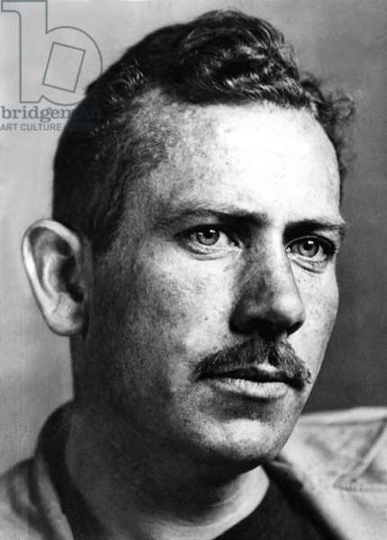John Steinbeck (1902-1968) American novelist here c. 1940 . Pulitzer Prize for the novel