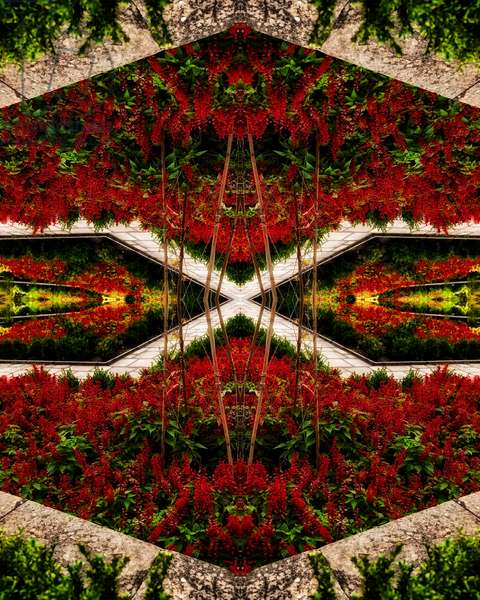 Red Flower Bed, 2015 (digital image)